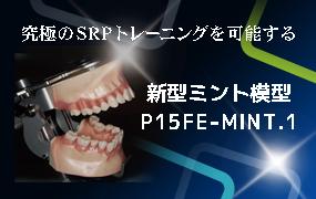 新型ミント模型 P15FE-MINT.1